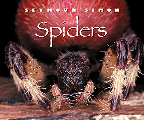 9780060283919: Spiders
