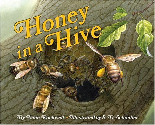 9780060285678: Honey in a Hive (Let's-Read-and-Find-Out Science 2)