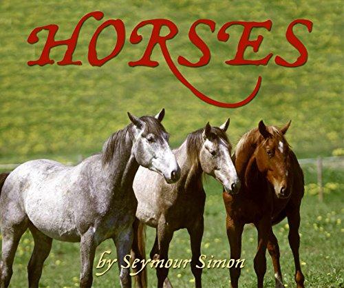 Horses: Simon, Seymour