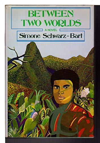 9780060390020: Between Two Worlds: A novel