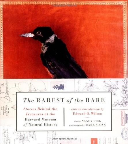 9780060537180: The Rarest of the Rare: Stories Behind the Treasures at the Harvard Museum of Natural History