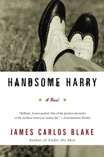 9780060554798: Handsome Harry: A Novel