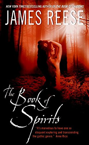 9780060561079: The Book of Spirits