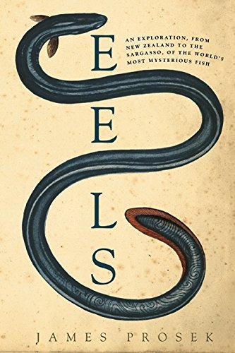 9780060566111: Eels: An Exploration, from New Zealand to the Sargasso, of the World's Most Mysterious Fish