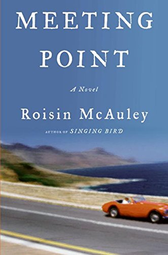 9780060737900: Meeting Point: A Novel