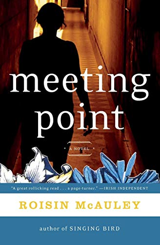 9780060737917: Meeting Point: A Novel