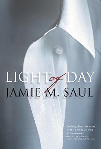 9780060747527: Light of Day: A Novel