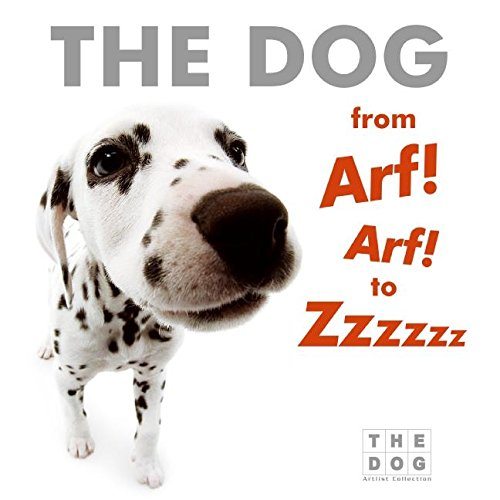 9780060771812: The Dog from Arf! Arf! to Zzzzzz Board Book