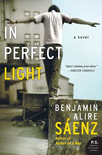 9780060779214: In Perfect Light: A Novel