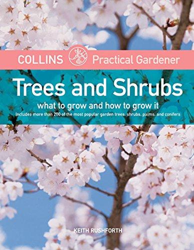 9780060786335: Trees & Shrubs (Harpercollins Practical Gardener)