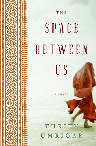 9780060791551: The Space Between Us: A Novel