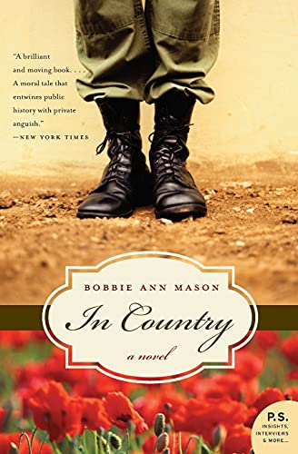 9780060835170: In Country: a novel