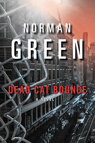 9780060851699: Dead Cat Bounce: A Novel