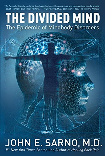 9780060851781: The Divided Mind: The Epidemic of Mindbody Disorders