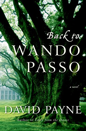 9780060851897: Back to Wando Passo: A Novel
