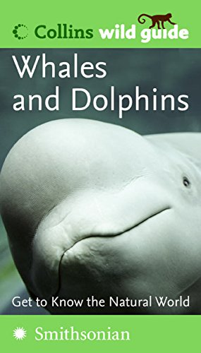9780060856175: Whales and Dolphins (Collins Wild Guide)