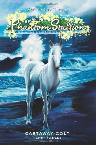 9780060886172: Castaway Colt (Phantom Stallion: Wild Horse Island)