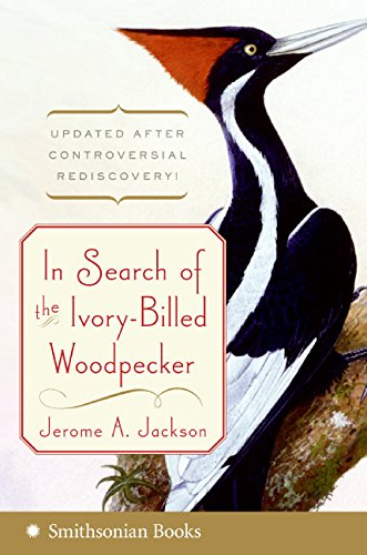 9780060891558: In Search of the Ivory-Billed Woodpecker