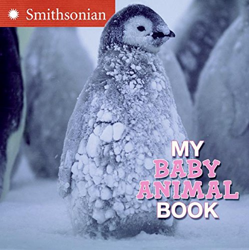 9780060899486: My Baby Animal Book