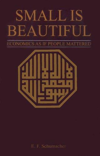 Small Is Beautiful: Economics As If People Mattered.: Schumacher, E. F.