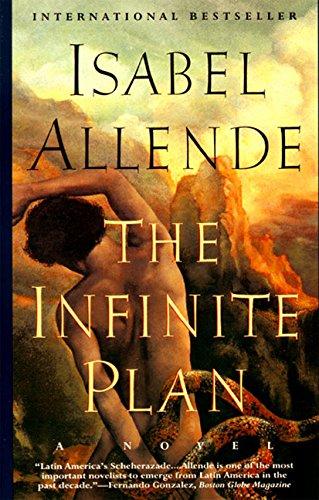 9780060924980: The Infinite Plan: Novel, A
