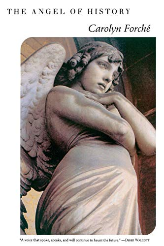 9780060925840: The Angel of History