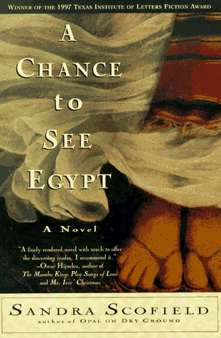 9780060927882: A Chance to See Egypt