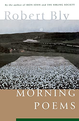 9780060928735: Morning Poems