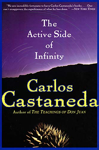 9780060929602: The Active Side of Infinity