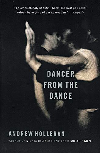 9780060937065: Dancer from the Dance: A Novel