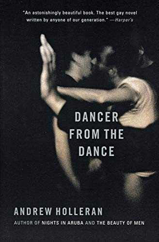 9780060937065: Dancer from the Dance: A Novel