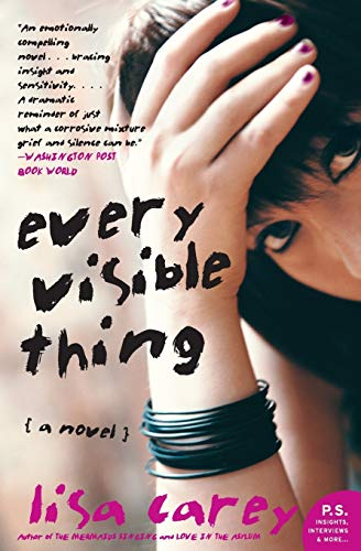 9780060937423: Every Visible Thing: A Novel
