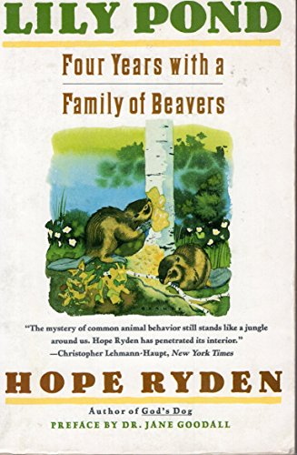 9780060973445: Lily Pond: Four Years With a Family of Beavers
