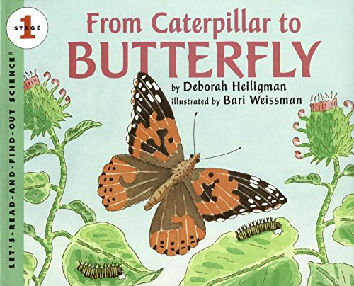 9780061119750: From Caterpillar to Butterfly Big Book