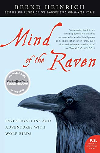 9780061136054: Mind of the Raven: Investigations and Adventures With Wolf-birds