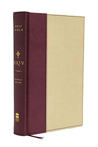 9780061231209: NRSV Standard Catholic Ed Bible Anglicized (Tan/Red)