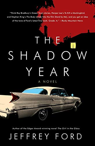9780061231537: The Shadow Year: A Novel