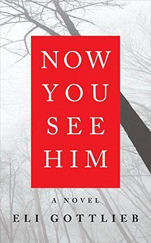 9780061284649: Now You See Him: A Novel