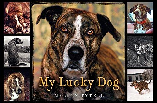 9780061473074: My Lucky Dog