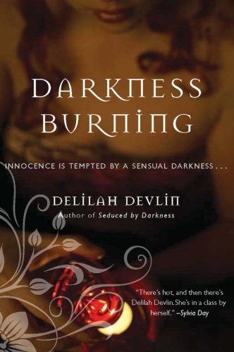 9780061498206: Darkness Burning (Dark Realm Series)