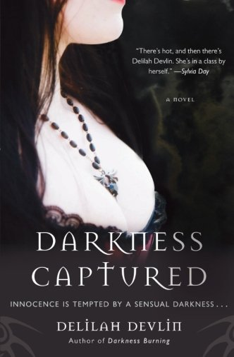 9780061498237: Darkness Captured: A Novel (Dark Realm Series)