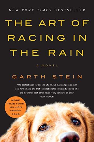 9780061537967: Art of Racing in the Rain, The