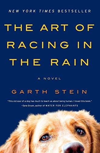The Art of Racing in the Rain: Stein, Garth