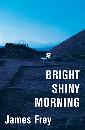 9780061573132: Bright Shiny Morning