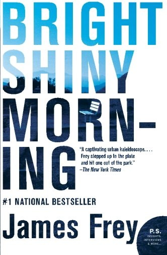 9780061573170: Bright Shiny Morning (P.S.)