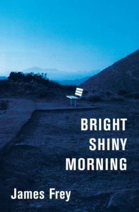 9780061649479: Bright Shiny Morning