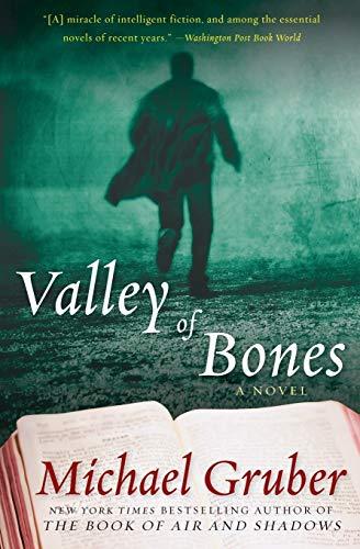 9780061650741: Valley of Bones: A Novel (Jimmy Paz)