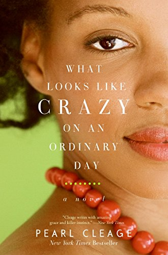 9780061710384: What Looks LIke Crazy On an Ordinary Day (Idlewild)