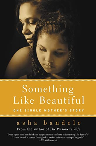 9780061710391: Something Like Beautiful: One Single Mother's Story