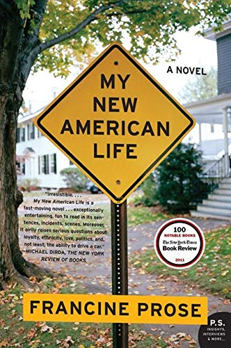 9780061713798: My New American Life: A Novel